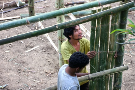 Uttam and his brother building their bamboo house